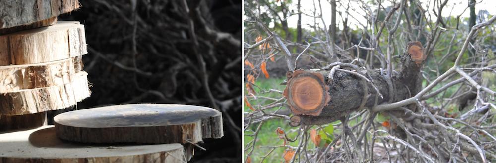 materiali ecodesign acacia
